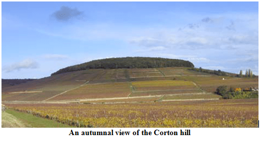 An autumnal view of the Corton hill