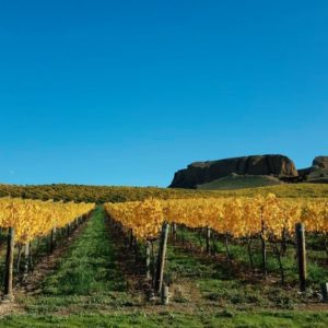 Mt Difficulty Central Otago